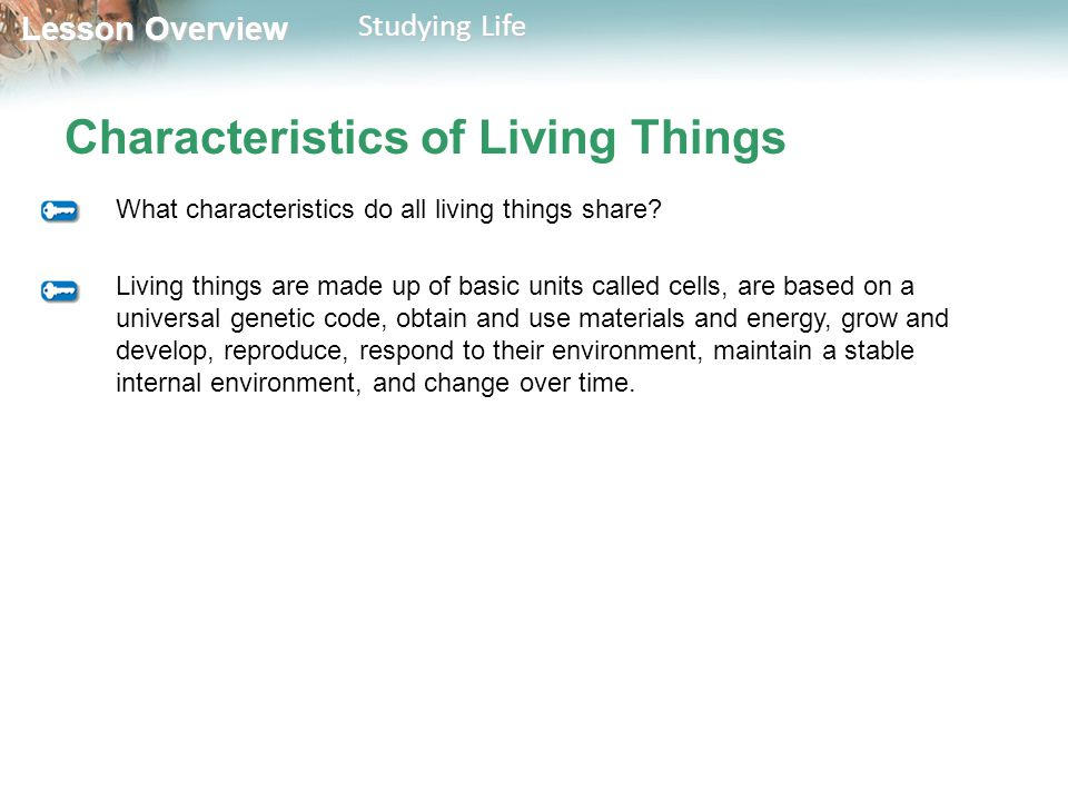 Lesson Overview Lesson Overview Studying Life Characteristics of Living Things Biology is the study of life.