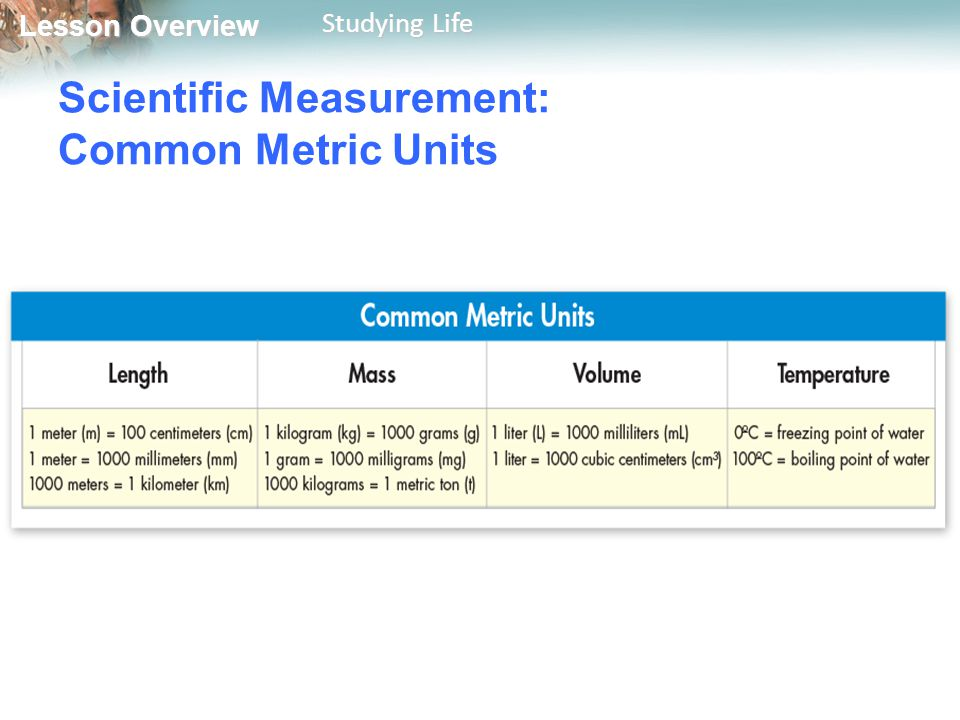 Lesson Overview Lesson Overview Studying Life Scientific Measurement: Common Metric Units