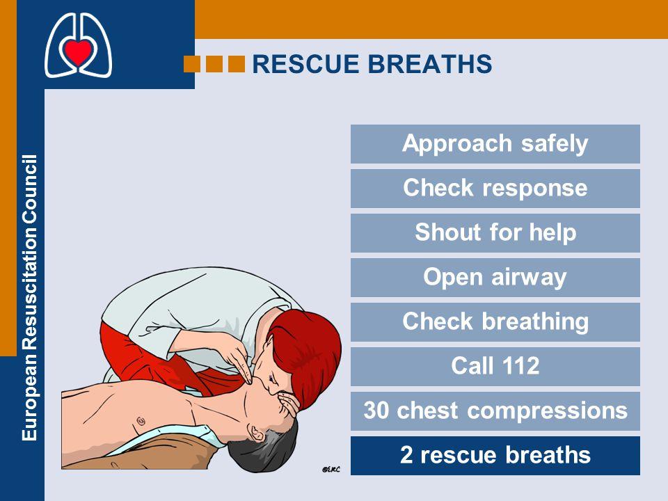 European Resuscitation Council Handley A.J., Koster R., Monsieurs K., Perkins G.D., Davies S., Bossaert L.: European Resuscitation Council Guidelines