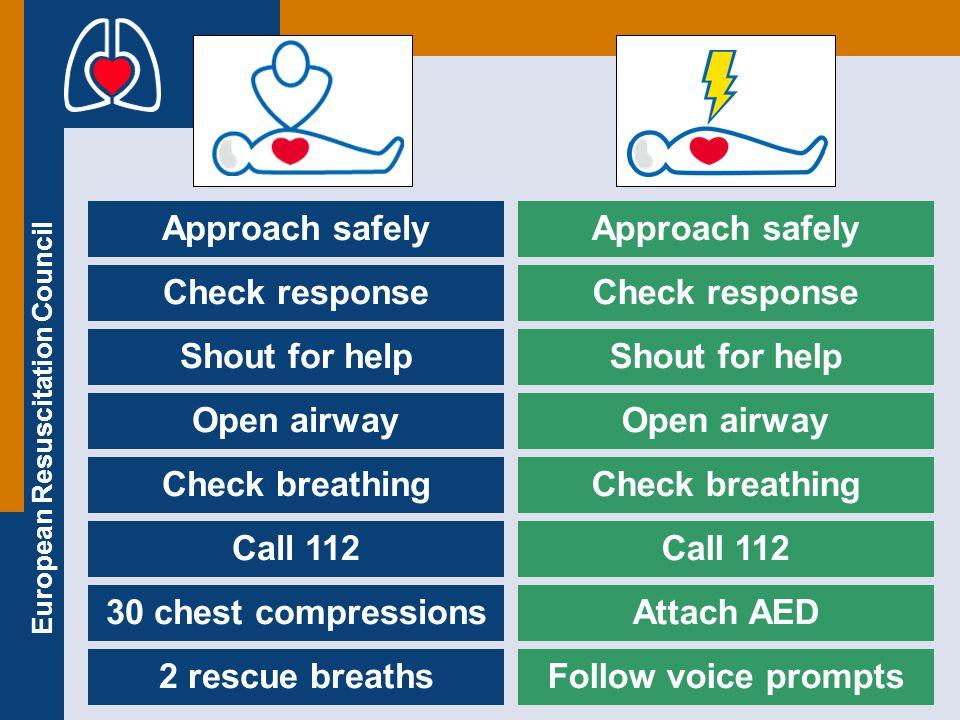 European Resuscitation Council Thank you !