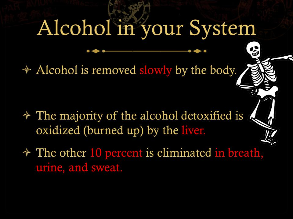 Alcohol in your System  Alcohol is removed slowly by the body.