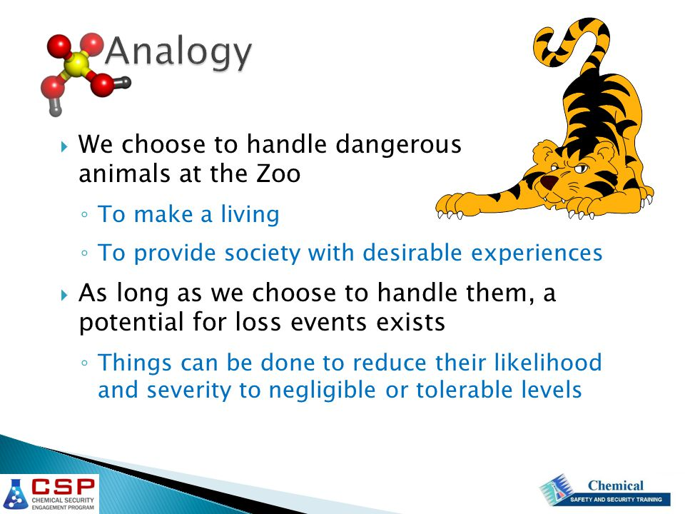 Analogy  We choose to handle dangerous animals at the Zoo ◦ To make a living ◦ To provide society with desirable experiences  As long as we choose to handle them, a potential for loss events exists ◦ Things can be done to reduce their likelihood and severity to negligible or tolerable levels