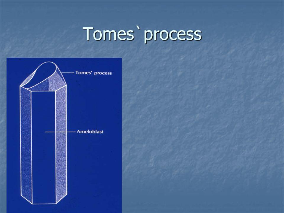 Tomes`process