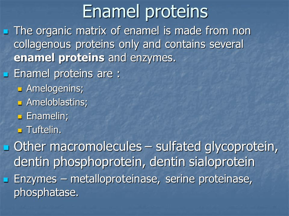 Enamel proteins The organic matrix of enamel is made from non collagenous proteins only and contains several enamel proteins and enzymes. The organic