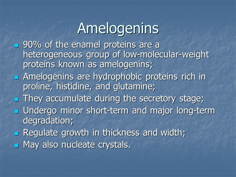 Аmelogenins 90% of the enamel proteins are a heterogeneous group of low-molecular-weight proteins known as amelogenins; 90% of the enamel proteins are a heterogeneous group of low-molecular-weight proteins known as amelogenins; Amelogenins are hydrophobic proteins rich in proline, histidine, and glutamine; Amelogenins are hydrophobic proteins rich in proline, histidine, and glutamine; They accumulate during the secretory stage; They accumulate during the secretory stage; Undergo minor short-term and major long-term degradation; Undergo minor short-term and major long-term degradation; Regulate growth in thickness and width; Regulate growth in thickness and width; May also nucleate crystals.