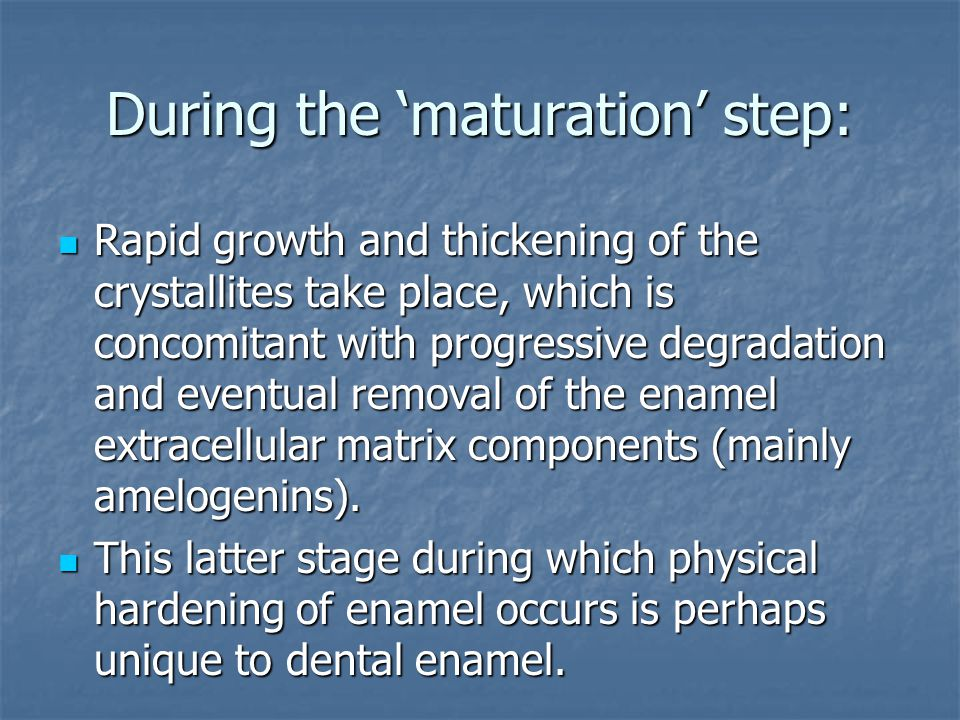 During the 'maturation' step: Rapid growth and thickening of the crystallites take place, which is concomitant with progressive degradation and eventual removal of the enamel extracellular matrix components (mainly amelogenins).