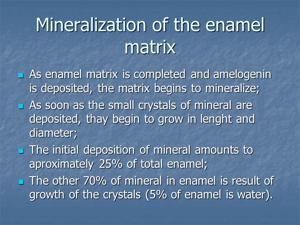 Mineralization of the enamel matrix As enamel matrix is completed and amelogenin is deposited, the matrix begins to mineralize; As enamel matrix is completed and amelogenin is deposited, the matrix begins to mineralize; As soon as the small crystals of mineral are deposited, thay begin to grow in lenght and diameter; As soon as the small crystals of mineral are deposited, thay begin to grow in lenght and diameter; The initial deposition of mineral amounts to aproximately 25% of total enamel; The initial deposition of mineral amounts to aproximately 25% of total enamel; The other 70% of mineral in enamel is result of growth of the crystals (5% of enamel is water).
