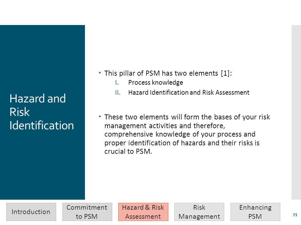 Hazard and Risk Identification  This pillar of PSM has two elements [1]: I.Process knowledge II.Hazard Identification and Risk Assessment  These two
