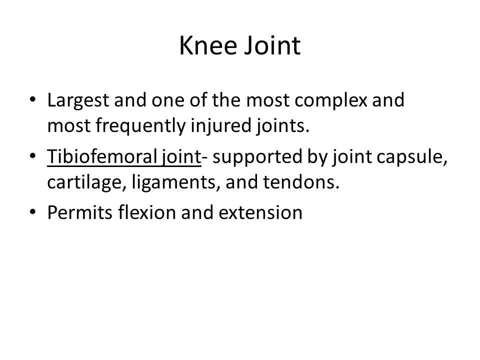Knee Joint Largest and one of the most complex and most frequently injured joints. Tibiofemoral joint- supported by joint capsule, cartilage, ligament