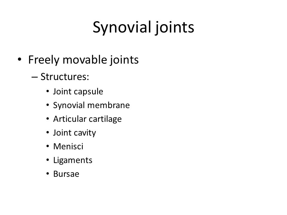 Synovial joints Freely movable joints – Structures: Joint capsule Synovial membrane Articular cartilage Joint cavity Menisci Ligaments Bursae