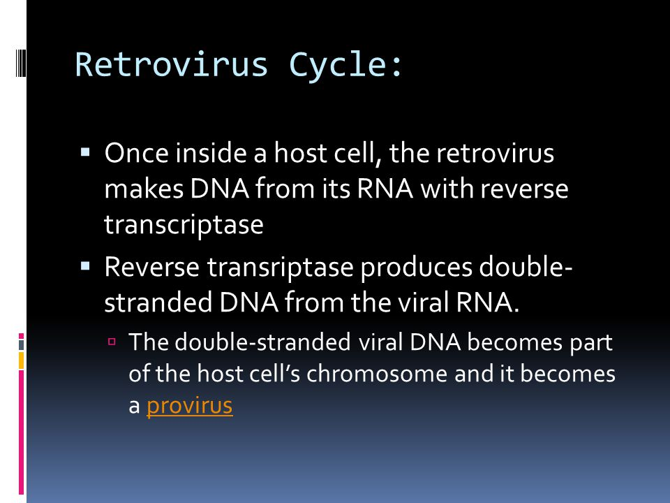  Once inside a host cell, the retrovirus makes DNA from its RNA with reverse transcriptase  Reverse transriptase produces double- stranded DNA from