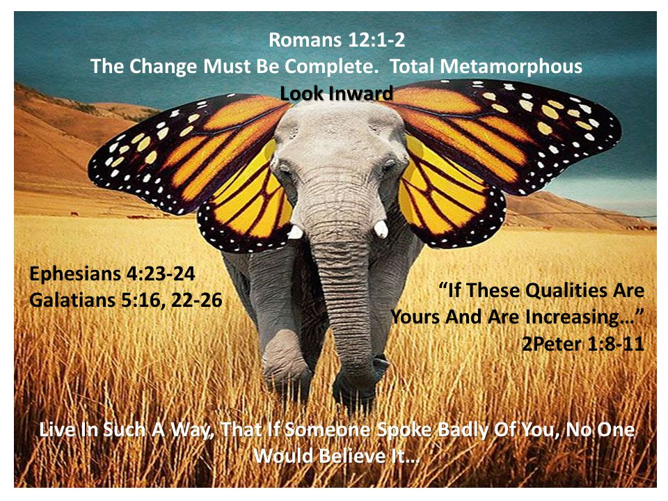 Romans 12:1-2 The Change Must Be Complete.