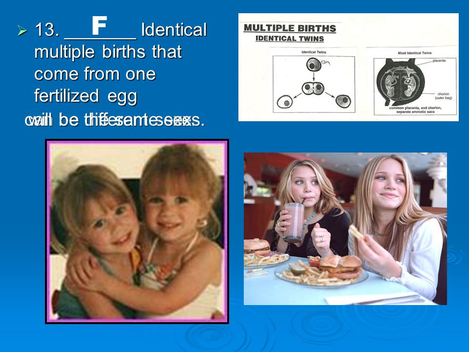 13. _______ Identical multiple births that come from one fertilized egg F can be different sexes.
