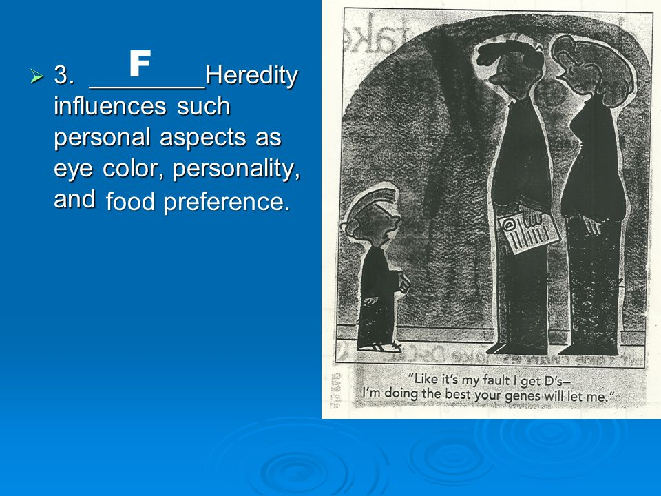  3. ________Heredity influences such personal aspects as eye color, personality, and F food preference.