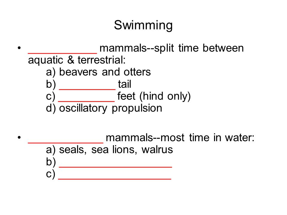 Swimming ___________ mammals--split time between aquatic & terrestrial: a) beavers and otters b) _________ tail c) _________ feet (hind only) d) oscillatory propulsion ____________ mammals--most time in water: a) seals, sea lions, walrus b) __________________ c) __________________