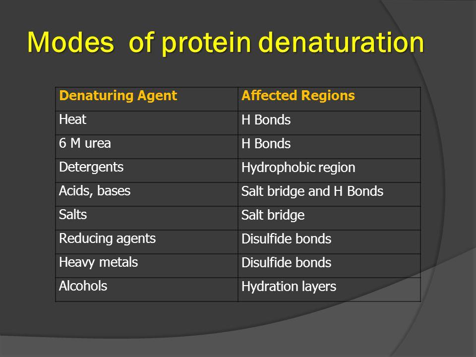 Modes of protein denaturation Denaturing AgentAffected Regions HeatH Bonds 6 M ureaH Bonds DetergentsHydrophobic region Acids, basesSalt bridge and H Bonds SaltsSalt bridge Reducing agentsDisulfide bonds Heavy metalsDisulfide bonds AlcoholsHydration layers