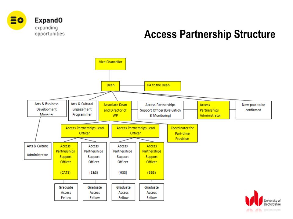Access Partnership Structure