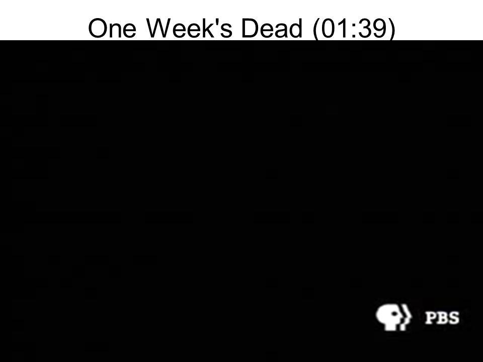 One Week s Dead (01:39)