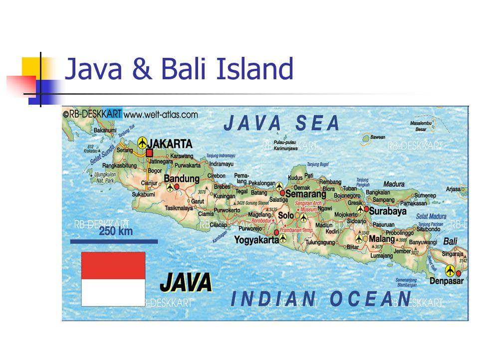 Java & Bali Island