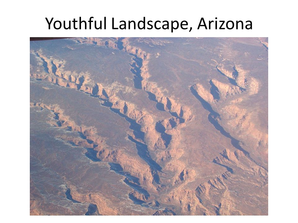 Youthful Landscape, Arizona