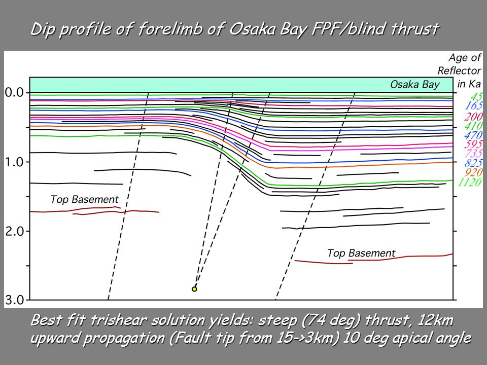 Best fit trishear solution yields: steep (74 deg) thrust, 12km upward propagation (Fault tip from 15->3km) 10 deg apical angle Dip profile of forelimb of Osaka Bay FPF/blind thrust