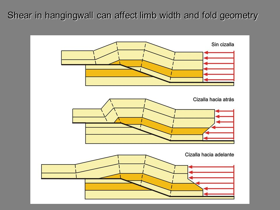 Shear in hangingwall can affect limb width and fold geometry