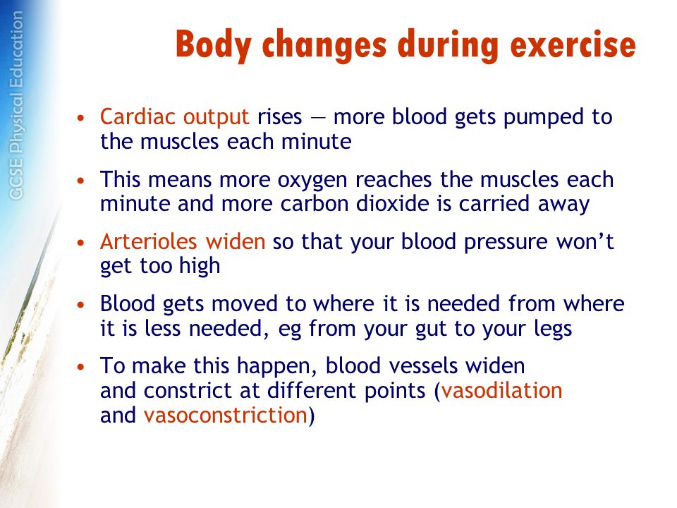 Body changes during exercise Cardiac output rises — more blood gets pumped to the muscles each minute This means more oxygen reaches the muscles each