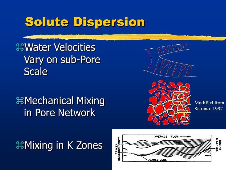 11 Solute Dispersion zWater Velocities Vary on sub-Pore Scale zMechanical Mixing in Pore Network zMixing in K Zones zWater Velocities Vary on sub-Pore Scale zMechanical Mixing in Pore Network zMixing in K Zones Modified from Serrano, 1997