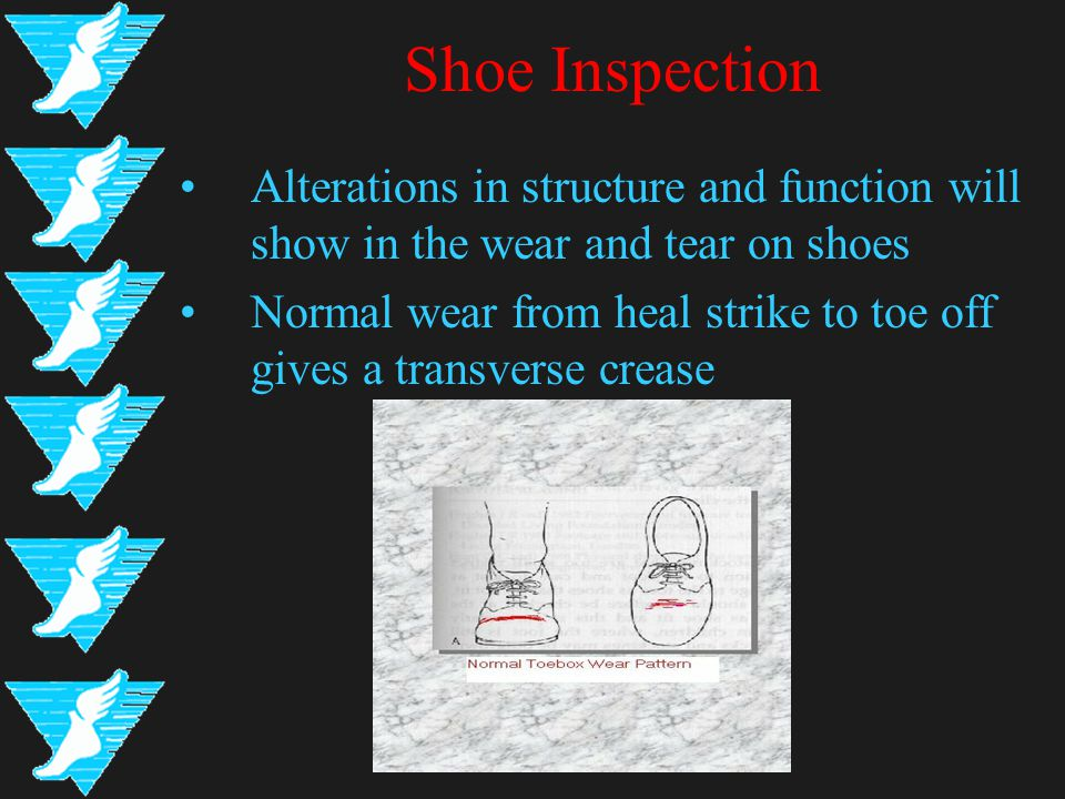 Shoe Inspection Alterations in structure and function will show in the wear and tear on shoes Normal wear from heal strike to toe off gives a transver