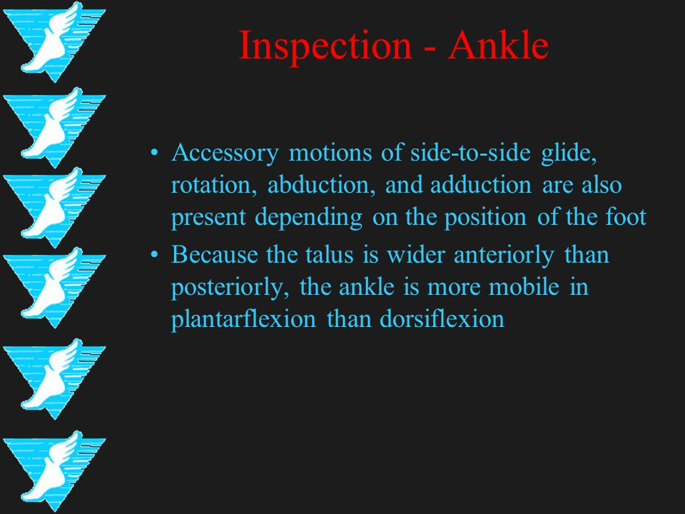Inspection - Ankle Accessory motions of side-to-side glide, rotation, abduction, and adduction are also present depending on the position of the foot Because the talus is wider anteriorly than posteriorly, the ankle is more mobile in plantarflexion than dorsiflexion