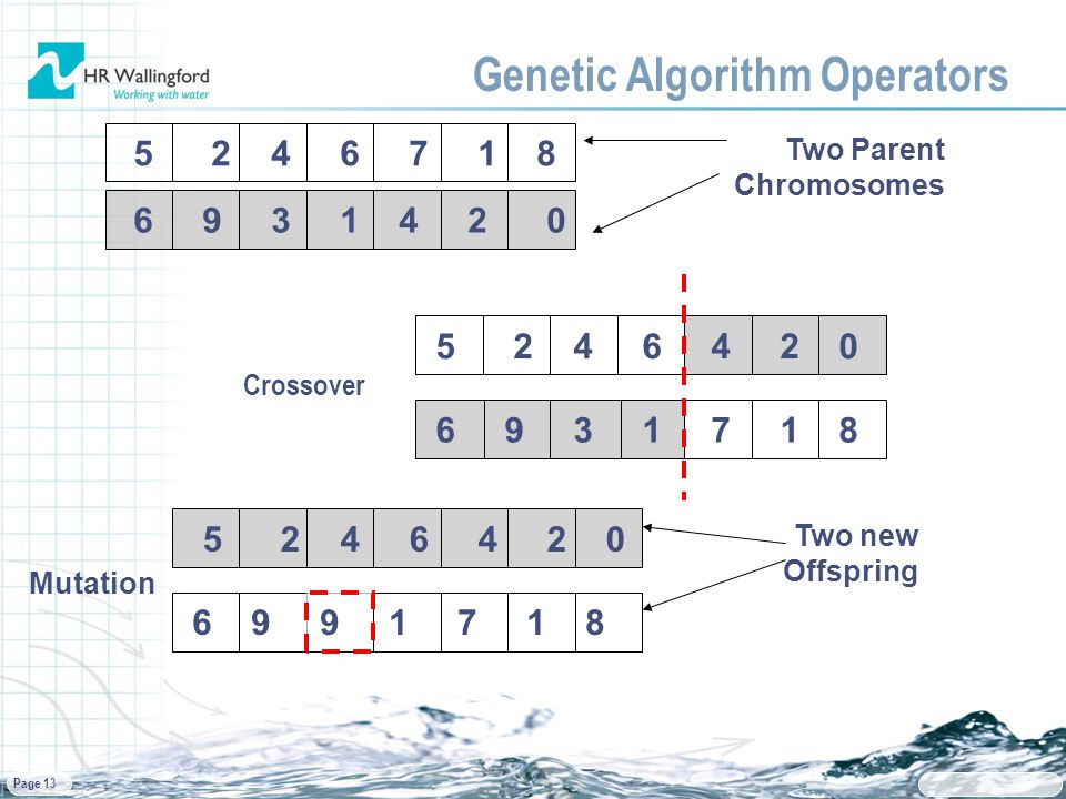 Page 13 Genetic Algorithm Operators 5 2 4 6 7 1 8 Two Parent Chromosomes 6 9 3 1 4 2 0 6 9 3 1 7 1 8 5 2 4 6 4 2 0 6 9 9 1 7 1 8 Two new Offspring Mutation Crossover