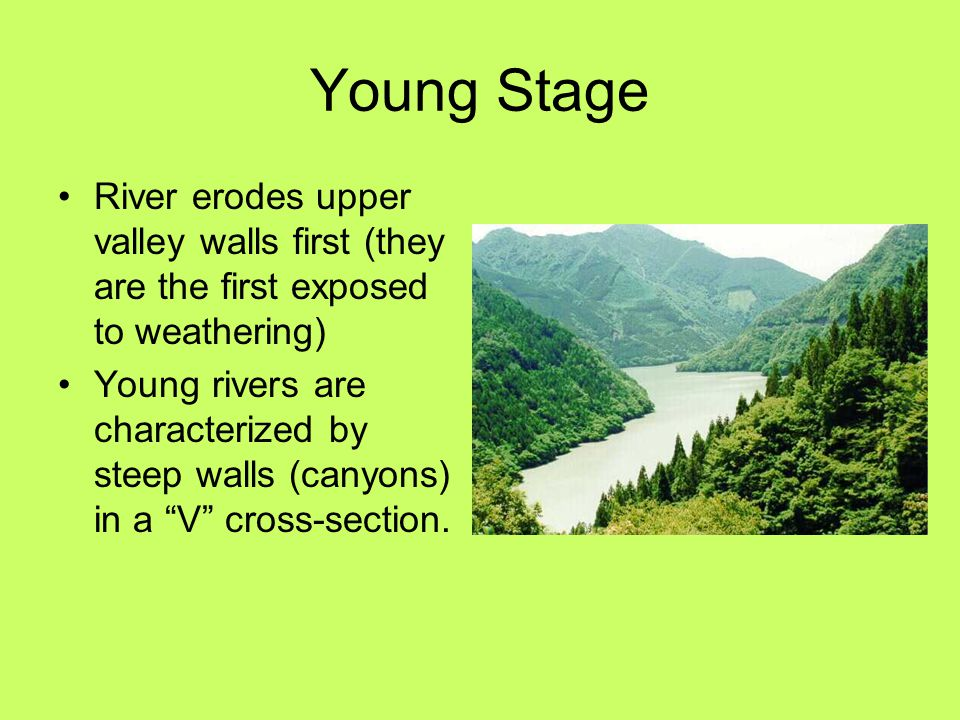 Young Stage River erodes upper valley walls first (they are the first exposed to weathering) Young rivers are characterized by steep walls (canyons) in a V cross-section.