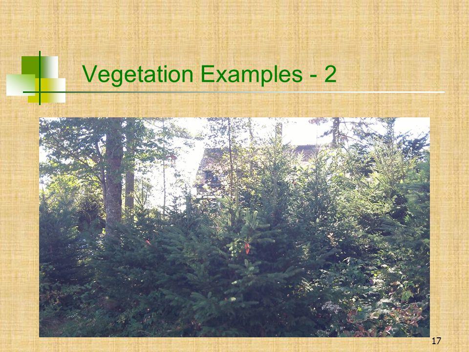 17 Vegetation Examples - 2
