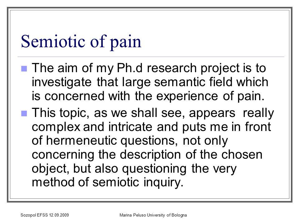 Sozopol EFSS 12.09.2009Marina Peluso University of Bologna Why pain is a semiotic object.