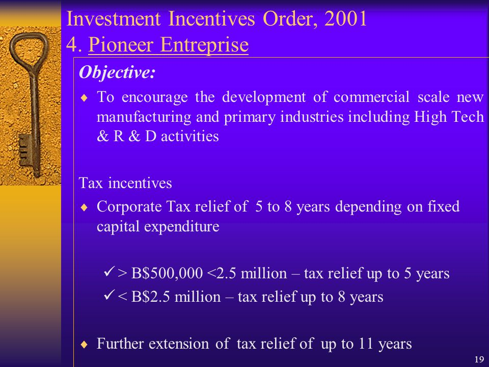 18 Investment Incentives Order, 2001 3. Promoted Activities (cont) Investment in New Technology Company Investment in Venture Company Investment in Ov