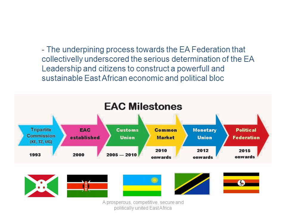 - The underpining process towards the EA Federation that collectivelly underscored the serious determination of the EA Leadership and citizens to cons