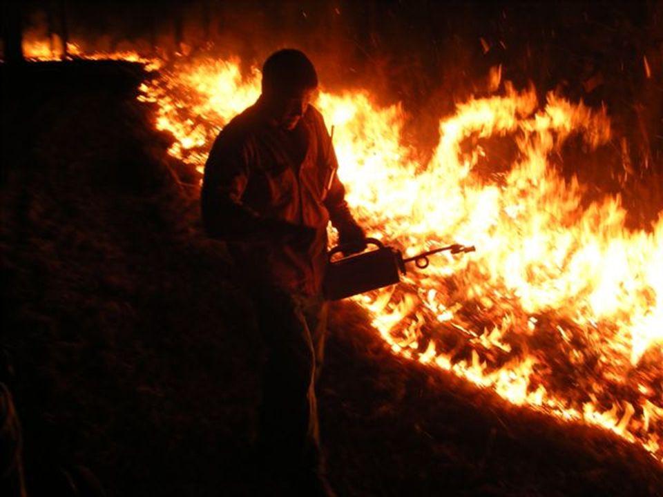 3 Fire lines do not control smoke…