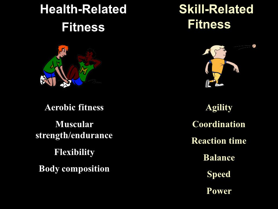 Skill-Related Fitness Health-Related Fitness Agility Coordination Reaction time Balance Speed Power Aerobic fitness Muscular strength/endurance Flexibility Body composition