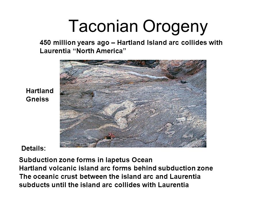 Taconian Orogeny Subduction zone forms in Iapetus Ocean Hartland volcanic island arc forms behind subduction zone The oceanic crust between the island