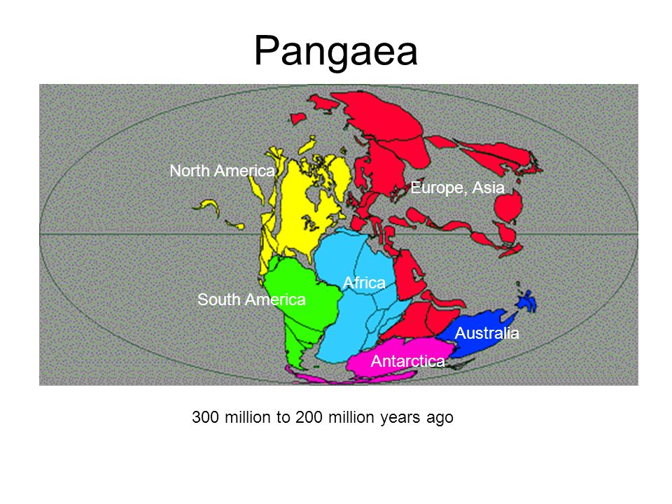 Pangaea North America Europe, Asia Africa South America Australia Antarctica 300 million to 200 million years ago