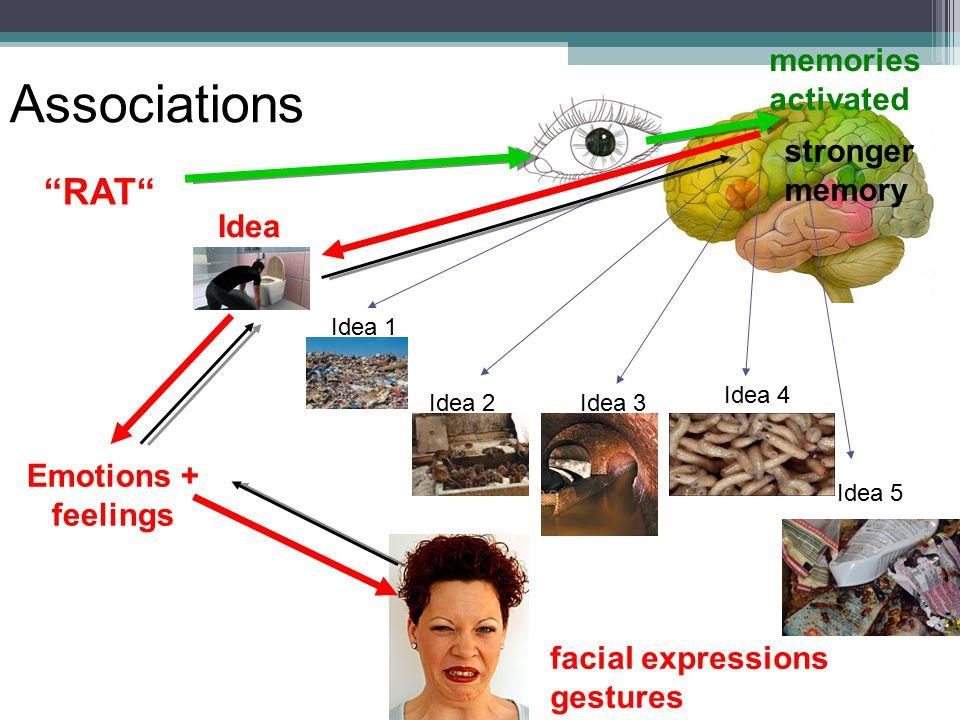 Idea 4 Emotions + feelings facial expressions gestures Associations Idea 5 Idea 3 Idea 1 Idea 2 memories activated Idea RAT stronger memory