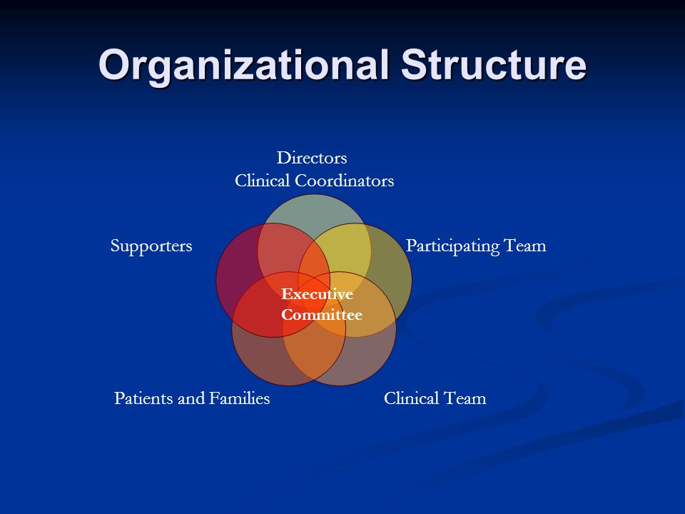 Organizational Structure Directors Clinical Coordinators Participating Team Clinical Team Patients and Families Supporters Executive Committee