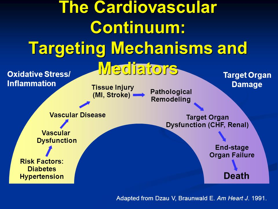 The Cardiovascular Continuum: Targeting Mechanisms and Mediators Risk Factors: Diabetes Hypertension Vascular Dysfunction Vascular Disease Tissue Injury (MI, Stroke) Pathological Remodeling Target Organ Dysfunction (CHF, Renal) End-stage Organ Failure Death Oxidative Stress/ Inflammation Target Organ Damage Adapted from Dzau V, Braunwald E.