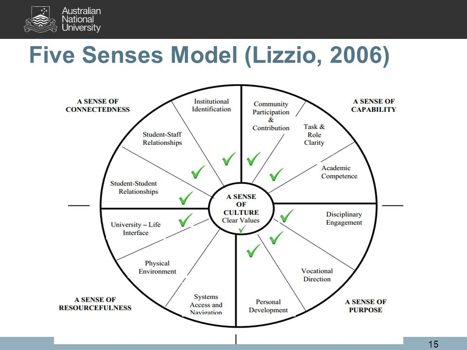 Five Senses Model (Lizzio, 2006) 15
