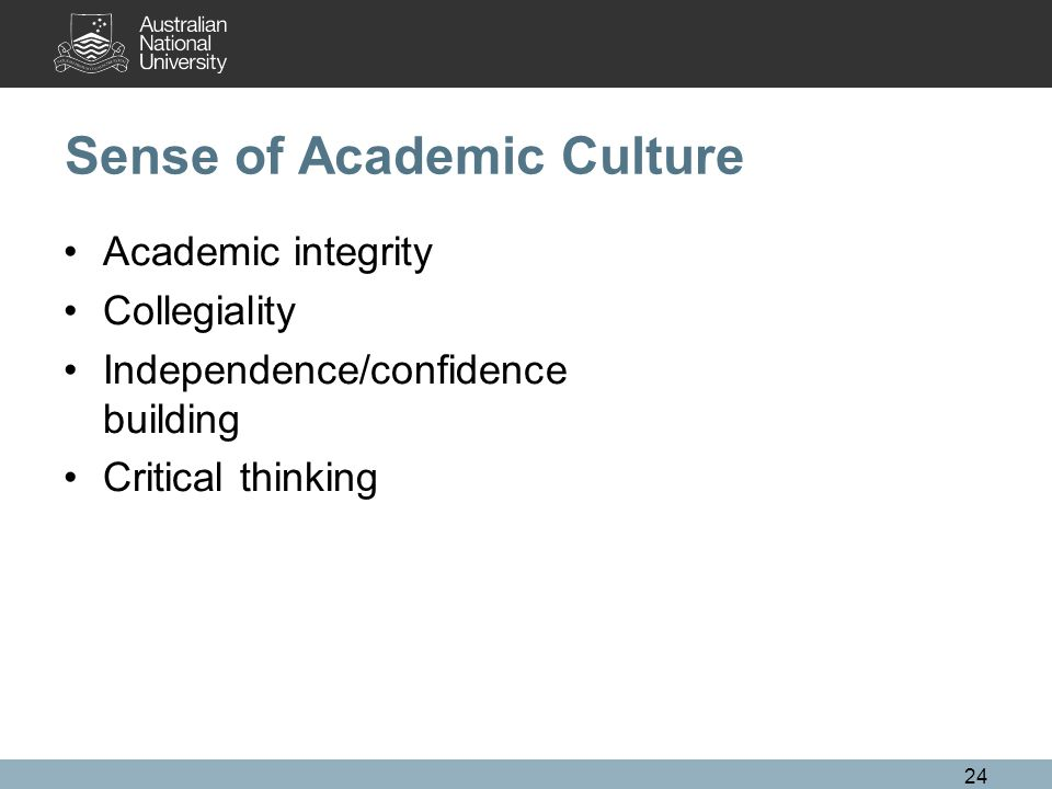 Sense of Academic Culture Academic integrity Collegiality Independence/confidence building Critical thinking 24