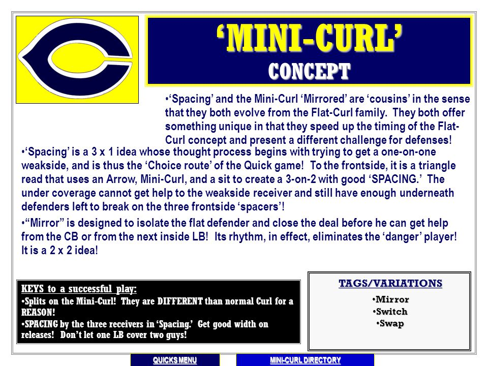 "'Mini Curl' Directory 2 x 2 ""MIRROR"" INSTRUCTIONAL ILLUSTRATIONS/EXAMPLES (All versions) Main Menu PREVIOUS SLIDE 3 x 1 ""SPACING"" INSTRUCTIONAL SPACIN"