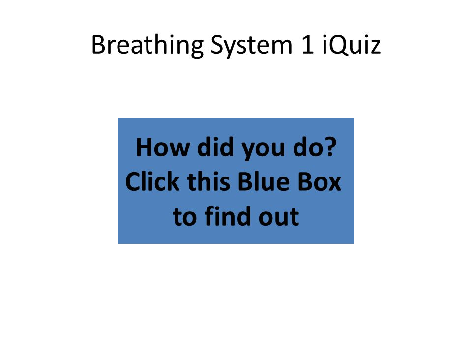 How did you do? Click this Blue Box to find out Breathing System 1 iQuiz