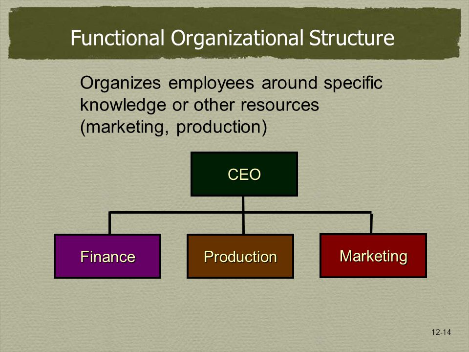 12-14 Organizes employees around specific knowledge or other resources (marketing, production) CEO FinanceProduction Marketing Functional Organizational Structure