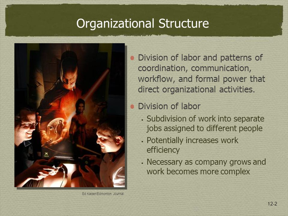 12-2 Organizational Structure Division of labor and patterns of coordination, communication, workflow, and formal power that direct organizational activities.