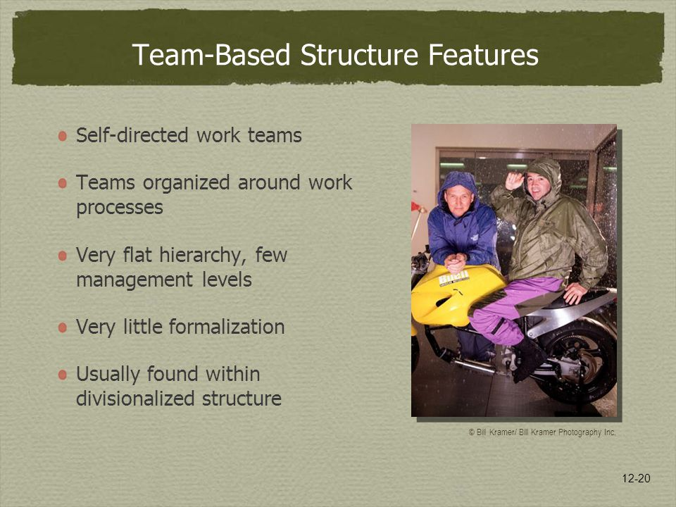 12-20 Team-Based Structure Features Self-directed work teams Teams organized around work processes Very flat hierarchy, few management levels Very little formalization Usually found within divisionalized structure © Bill Kramer/ Bill Kramer Photography Inc.